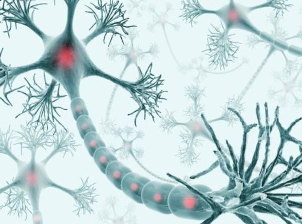 Epilepsia dependiente de piridoxina