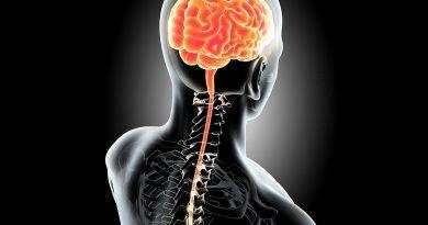 Un grupo de investigadores ha diseñado unas vesículas lipídicas con la finalidad de utilizarlas en terapias génicas para el tratamiento de enfermedades del sistema nervioso central.