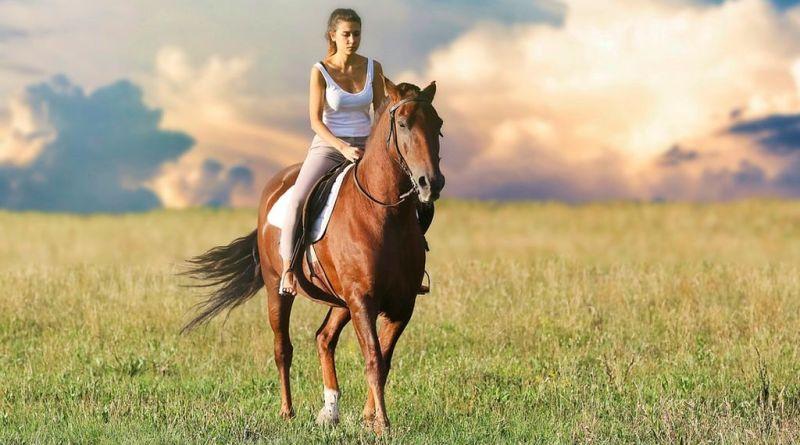 Los caballos, clave para la mejora de los pacientes con esclerosis múltiple
