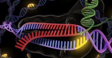 El Grupo Internacional de Investigación Genética iniciará un estudio sobre el síndrome hipermóvil de Ehlers-Danlos (hEDS)