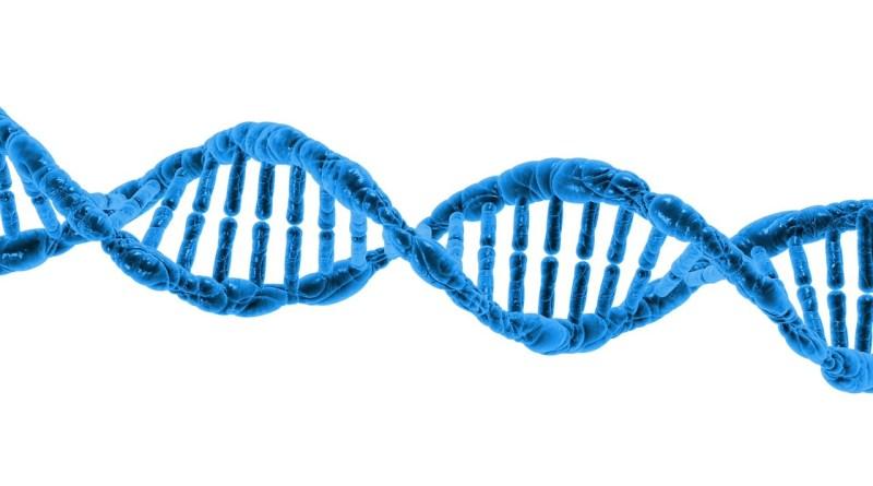 Nueva investigación para la fibrosis pulmonar idiopática para investigar la causa genética de la enfermedad