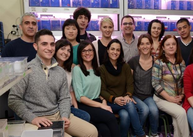 """Proyecto Precipita: """"Nuevos tratamientos para interferonopatías infantiles"""