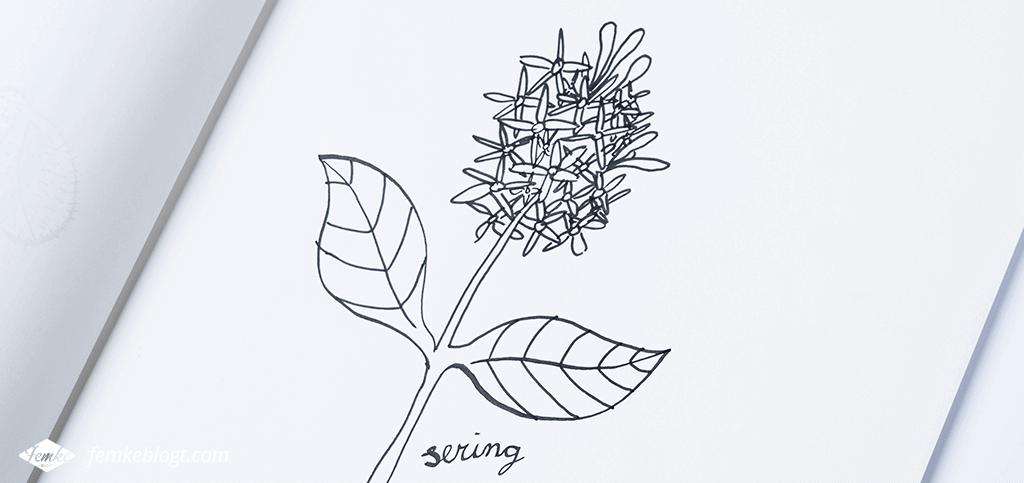31 Dagen bloemen | Sering