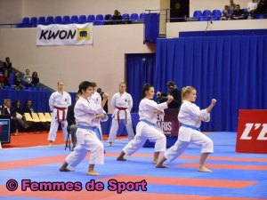 karate-france-kata-fontenay-01-2014.jpg