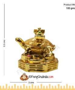 Golden Turtle With RU-YI