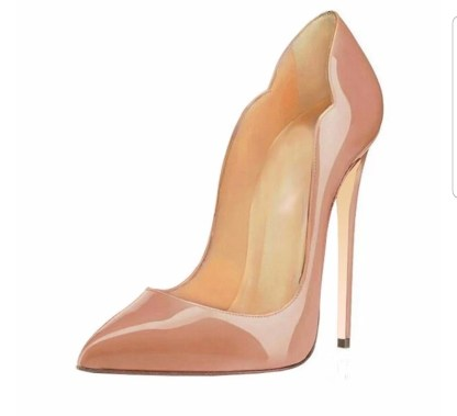 The Ferago Celine Pumps New 18