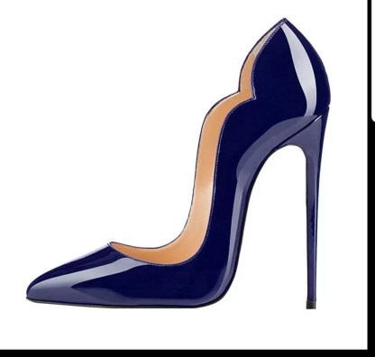 The Ferago Celine Pumps New 2