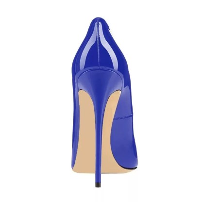 The Ferago Celine Pumps New 23