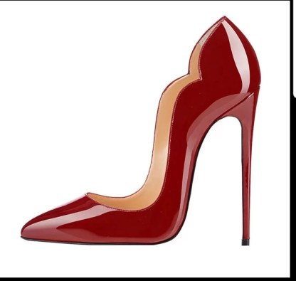 The Ferago Celine Pumps New 6