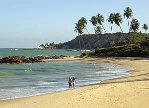 Tabatinga: Praia virgem tem coqueirais e falésias