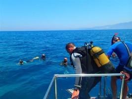unterwasserwelt kreta