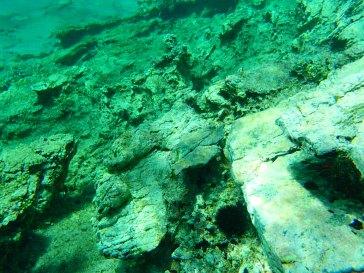 kreta unterwasser welt