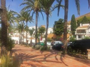 Calle Las Palmeras