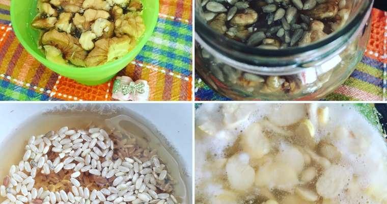 AMMOLLO e PRIMA FERMENTAZIONE di cereali, legumi, frutta secca e semi
