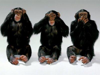 https://i2.wp.com/www.fernan.com.es/wp-content/uploads/2007/04/sin_censura_no_evil.jpg