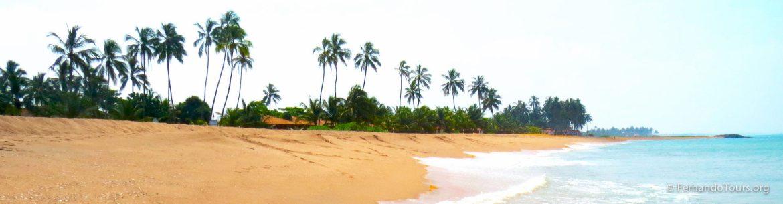 Sri Lanka Negombo beach