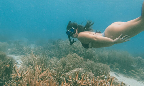 snorkeling in Mexican Riviera