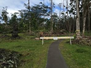 Big Island Hawaii - Pahoa - Lava Tree Monument - closed