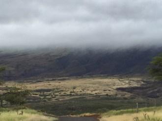 Maui Hawaii - Strasse im Süden - regenverhangen - aber schön