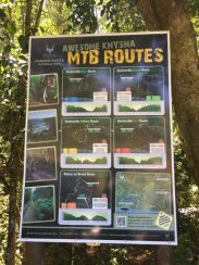 Afrika-Garden-Route-58