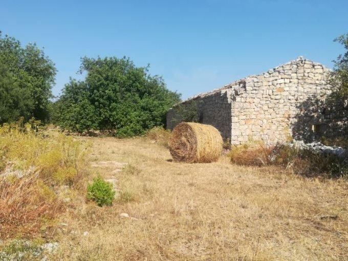 Fabbricato rurale con terreno