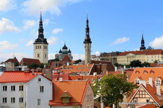 Tallinn City Wall View