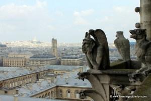 My Favorite Places in Paris