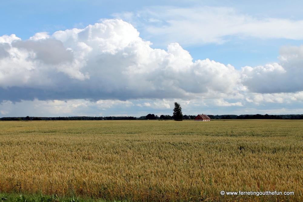 Latvian Countryside