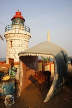 Sogar vor dem großen Hai ist die heilige Kuh geschützt (aufgenommenen bei Visakhapatnam in Andra Pradesh)