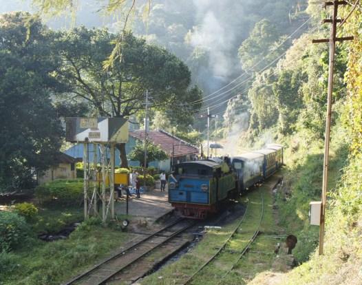 Durch die Teeplantagen Südindiens schlängelt sich die Nilgiri Mountain Railway - eine zum Teil mit ölgefeuerten Dampfloks betriebene Zahnrad-Schmalspurbahn