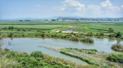 Ich hätte gedacht, dass die Grenze zwischen Nordkorea und China stärker gesichert sei. Sichtbar ist allein ein wackeliger Stacheldrahtzaun