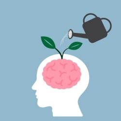 El Cerebro: el laboratorio de la Fertilidad (Mindfulness)