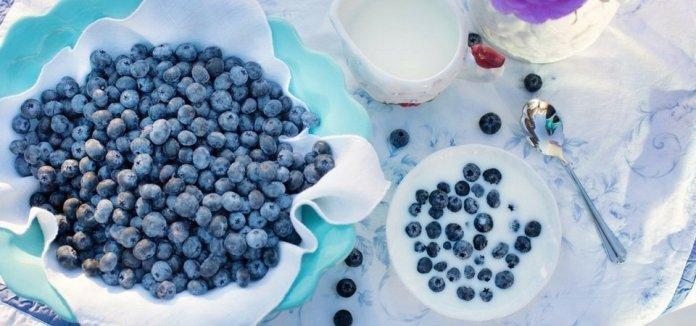 Blueberries Fertility Benefits