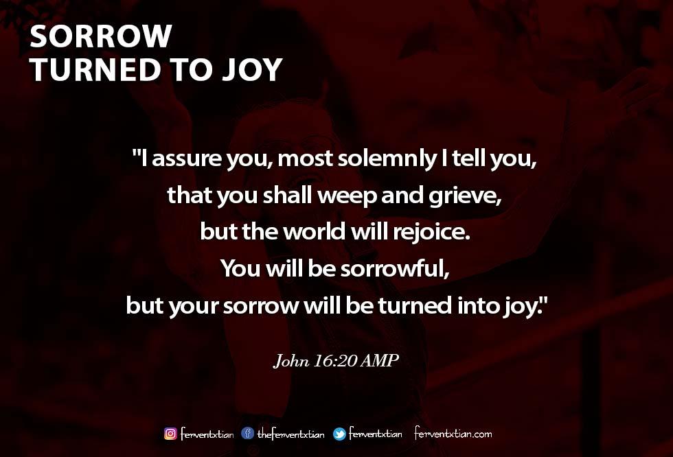 The Light Daily Devotional – Sorrow Turned to Joy
