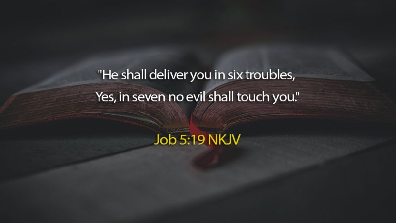 The Light Daily Devotional –   The Lord will Deliver You