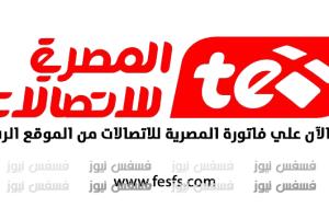 فاتورة التليفون الأرضي من المصرية للاتصالات فبراير 2017 أستعلم الآن سدد فاتورة التليفون الأرضي المنزلى