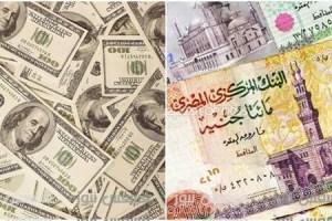 سعر الدولار اليوم في كل البنوك اليوم الإثنين 9 يناير 2017 محدث سعر الدولار الآن في مصر