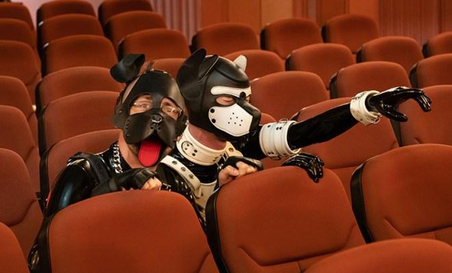 Puppies in Cinema - copyright 2020, fesselblog.de