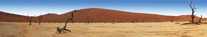 Raphael DOUMARD - Dead vlei - Namibie