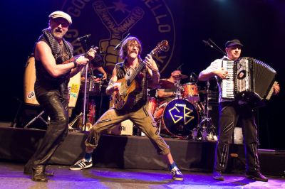 gogol bordello in concerto
