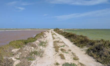 Mexican Music Adventure: Yucatán Peninsula