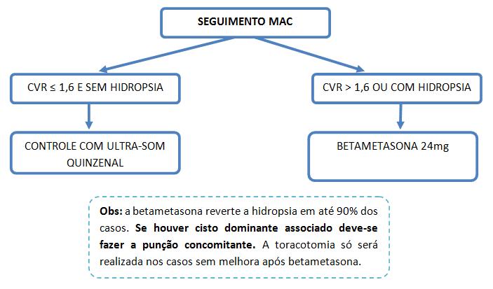maccGG
