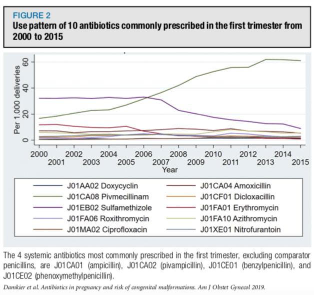 Antibióticos e Gravidez
