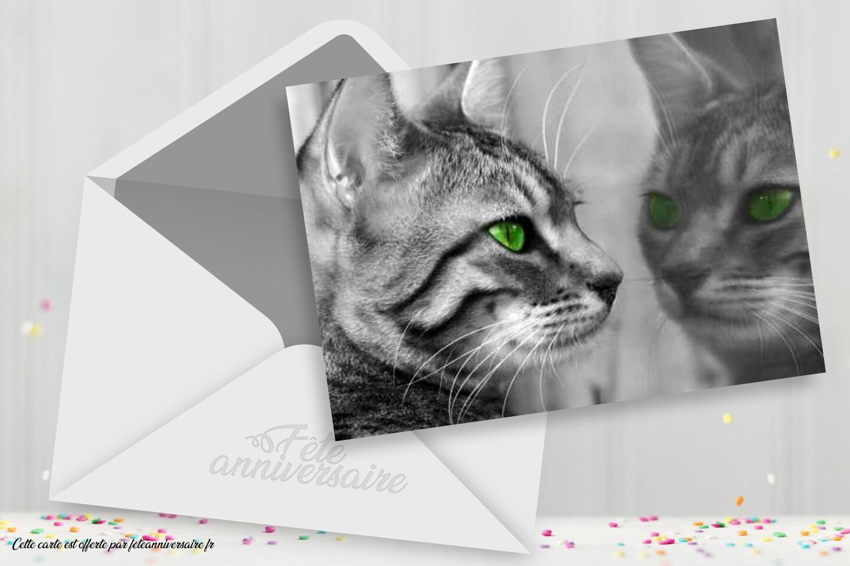 carte d anniversaire avec un chat