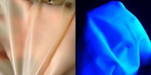 UV Latex Sheet
