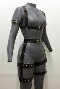 Buckle Up Harness Set quater
