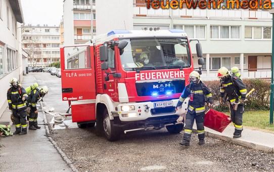 Zehn Personen bei Wohnungsbrand gerettet