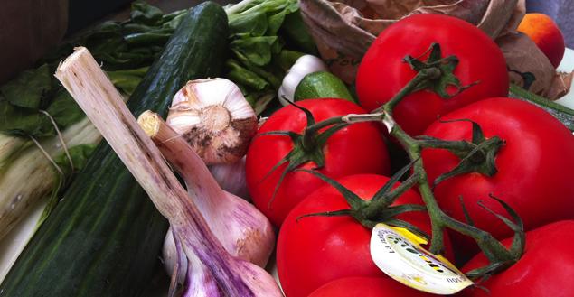 tomates-concombres-bio-panier-bio-feuille-de-choux
