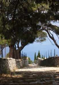 La paysage sauvage de l'île de Spetsès - Feuille de choux