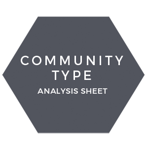 Community type analysis sheet